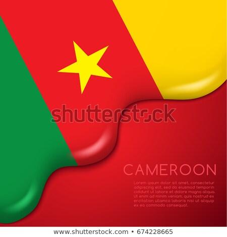 Камерун флаг темы Идея дизайна текстуры Сток-фото © kiddaikiddee