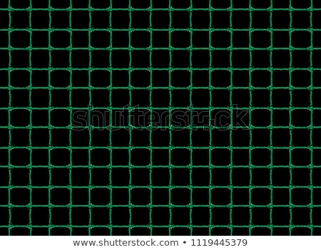 Green fishnet Stock photo © disorderly