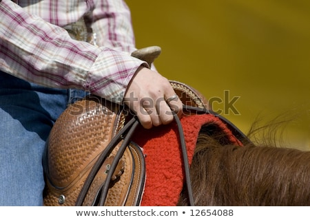westerse · zadel · leggen · prairie · paarden · gras - stockfoto © wime