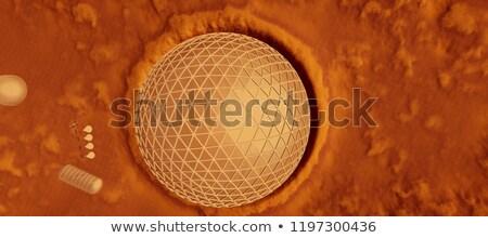3d Mars like planet Stock photo © maxmitzu