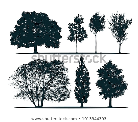 Stock foto: Profil · Baum · Himmel · Natur · Berg · blau
