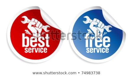 Free Services Blue Vector Icon Design Stock photo © rizwanali3d
