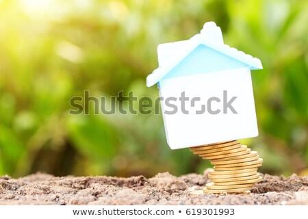 дома · продажи · Корзина · изолированный · белый · здании - Сток-фото © lightsource