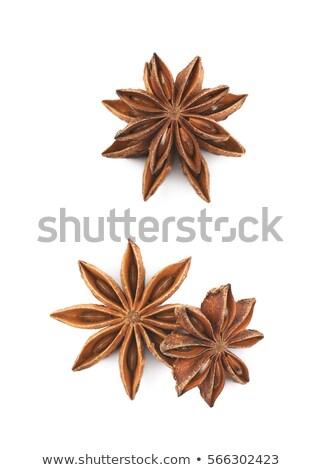 Köteg organikus csillag ánizs csakra makró Stock fotó © ziprashantzi