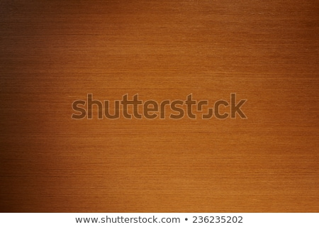Finanziare tavolo in legno parola ufficio soldi bambino Foto d'archivio © fuzzbones0
