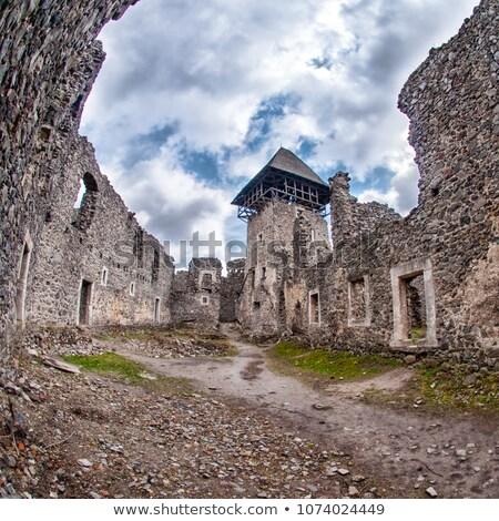 Castelo aldeia Ucrânia ruínas 12 km Foto stock © artfotoss