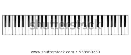 classic piano keys background stock photo © magann