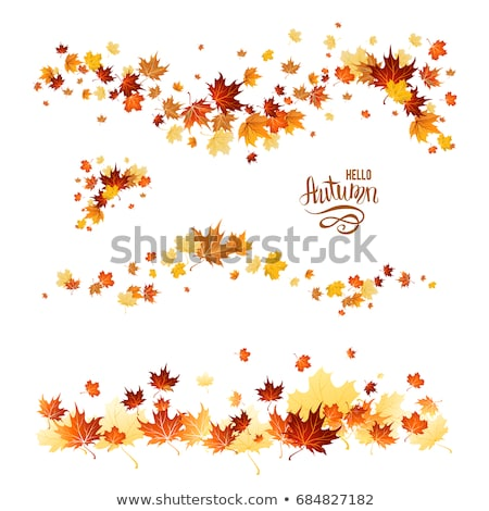Yellowing autumn leaves in the woods. Stock photo © justinb