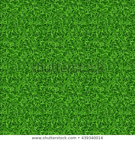 Seamless background design with green grass Stock photo © bluering