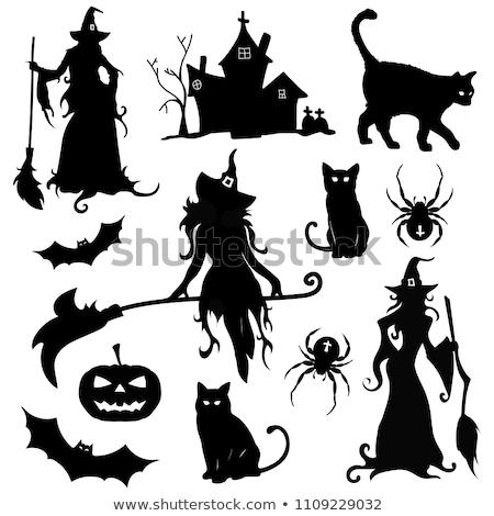 Halloween bruxa aranha ilustração menina noite Foto stock © adrenalina