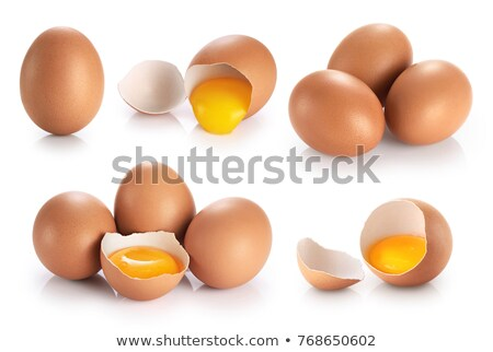 Foto stock: Eggs Collection