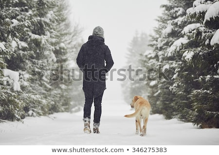 people hiking on snow path in winter time stock photo © stevanovicigor