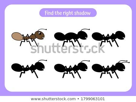Vinden schaduw mieren spel kinderen Stockfoto © Olena
