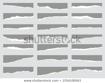 Blank notebook page with torn edge Stock photo © pakete