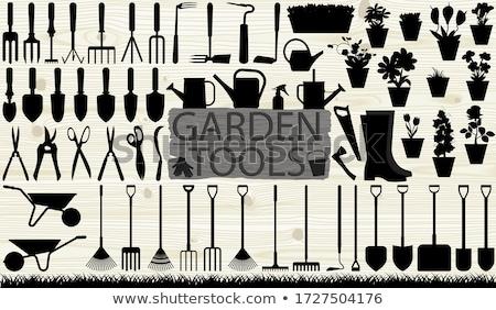 ogród · narzędzia · sylwetka · biały · eps · 10 - zdjęcia stock © ratkom