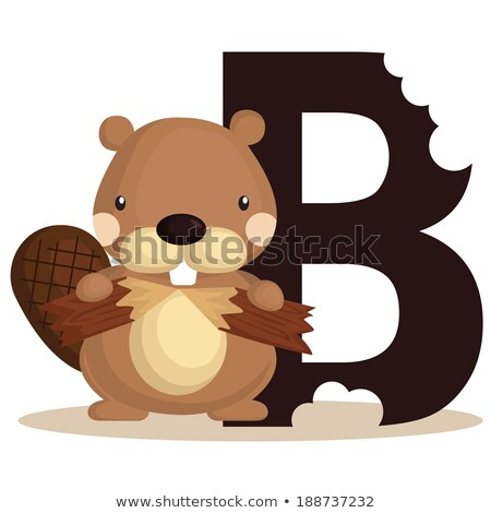A letter B for beaver Stock photo © colematt