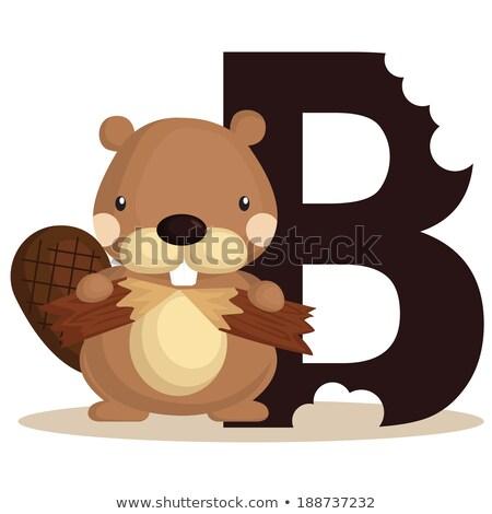 a letter b for beaver stock photo © colematt