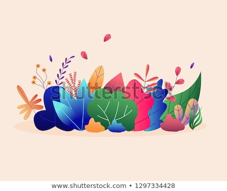 szett · színek · virágmintás · terv · elemek · dekoratív - stock fotó © decorwithme