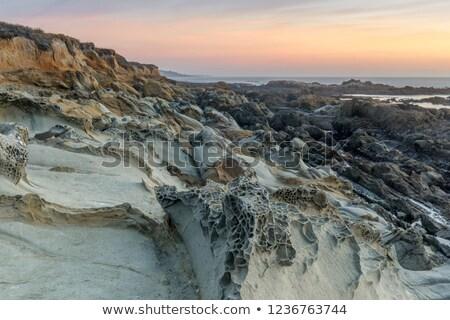 Bab üreges tengerpart Kalifornia USA víz Stock fotó © yhelfman