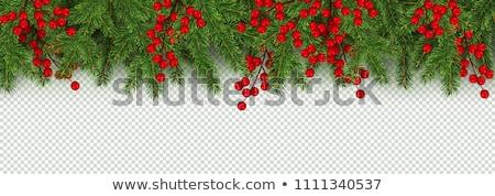 Christmas Garlands Transparent Background Stock photo © cammep