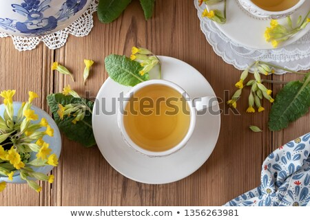 A cup of herbal tea with primula flowers, top view Stock photo © madeleine_steinbach