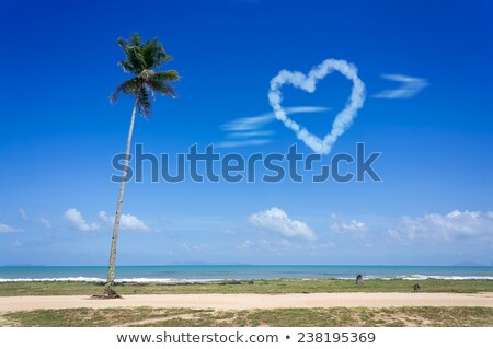 romantic beach with palms and heart shaped cloud Stock photo © dolgachov