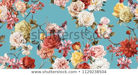 Rose flower in bloom, abstract floral blossom art background, ma Stock photo © Anneleven