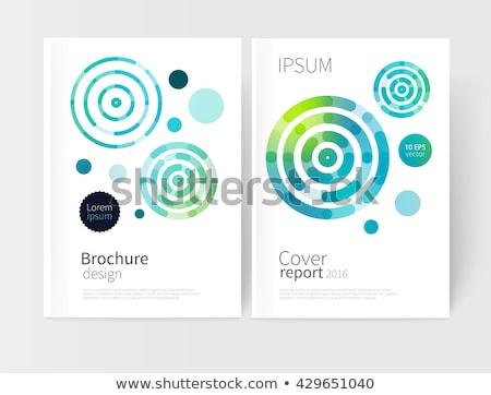 abstract blue white concentric circles stock photo © marinini