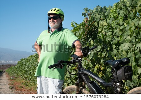 Man behind bunches of grapes in vineyard Stock photo © photography33