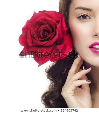 piros · rózsa · nő · kéz · izolált · fehér · lány - stock fotó © zastavkin