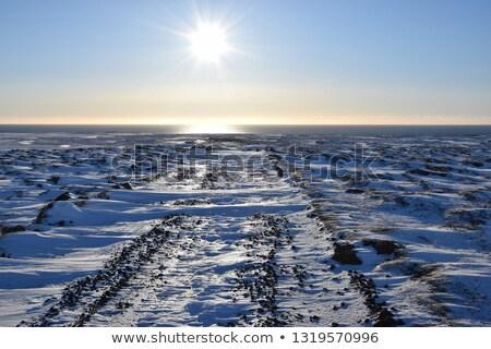 sóder · út · kék · Izland · keskeny · természet - stock fotó © tomasz_parys