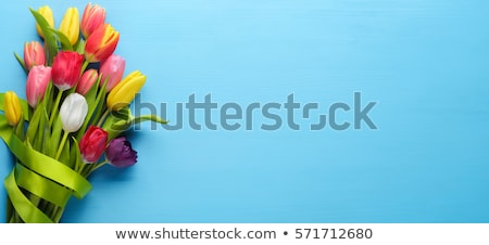 pink present and colorful tulips festive easter decoration Stock photo © juniart