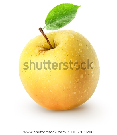 Single a fresh yellow apple stock photo © boroda