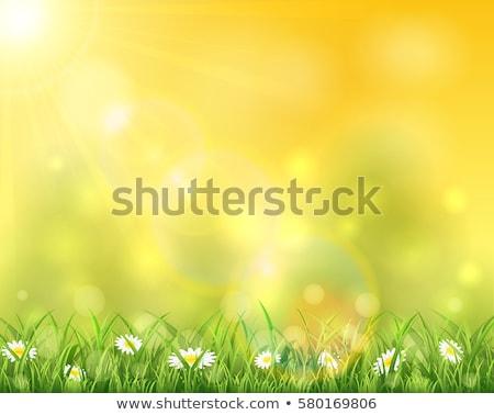 желтый Пасху акварель окна яйца весны Сток-фото © Pasiphae