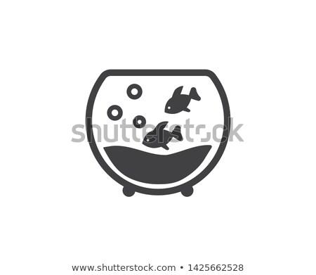 Icon fishbowl Stock photo © zzve