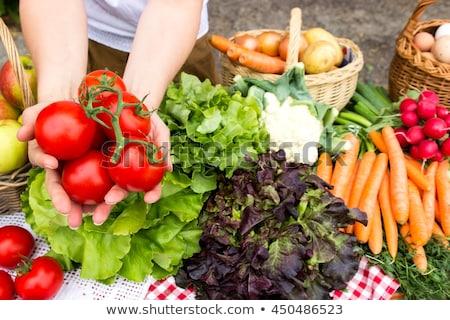 Fraîches paysan salade pays grec village Photo stock © doupix