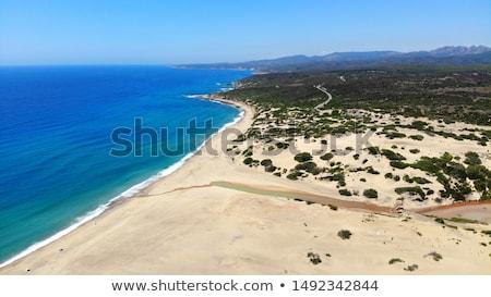 砂浜 イタリア 南西 水 海 夏 ストックフォト © Antonio-S