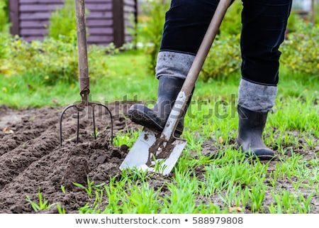 Ogrodnictwo ogród widelec człowiek bed niebo Zdjęcia stock © sdenness