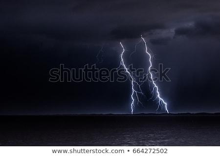 Flash lightning over the ocean Stock photo © haraldmuc