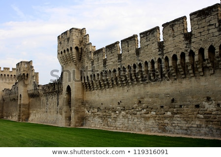 city wall of avignon france stock photo © dinozzaver