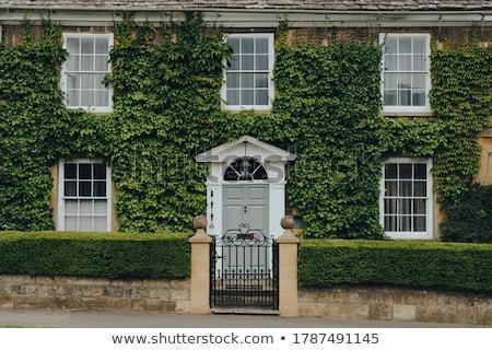 Klimop huis gebouw muur groene stedelijke Stockfoto © tommyandone