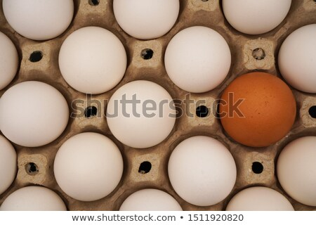 Diversified Group Thinking Concept Stock photo © tab62