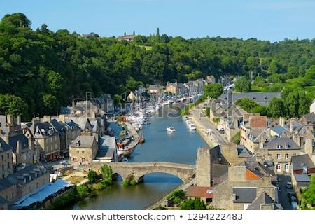Gótico puente Francia edificio viaje río Foto stock © phbcz