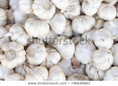 Pile garlic  Stock photo © fresh_4870785