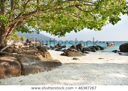 küçük · ada · Tayland · güzel · doğal · manzara - stok fotoğraf © art9858