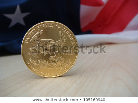 Silver Coin Investment, one ounce troy Stock photo © pixelman