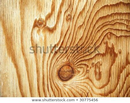 Interessant knoop houtstructuur sparren klaar ontwerp Stockfoto © taviphoto