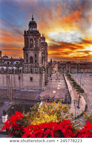 metropolitan cathedral zocalo mexico city mexico christmas sunri stock photo © billperry