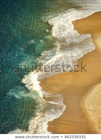 Cukor cipó hegy tájkép hegyek trópusi Stock fotó © madelaide