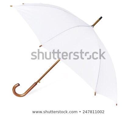 Marrom guarda-chuva isolado branco primavera Foto stock © tetkoren
